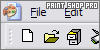 Corel Paint Shop Pro: