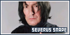 Harry Potter: Snape, Severus: