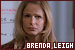 The Closer: Brenda Leigh Johnson: